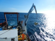 WatchMate Current and Wave Buoy being deployed