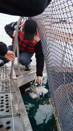 Inspecting net infrastructure