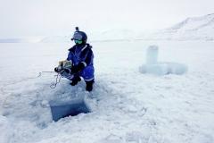 Arctic-Shot